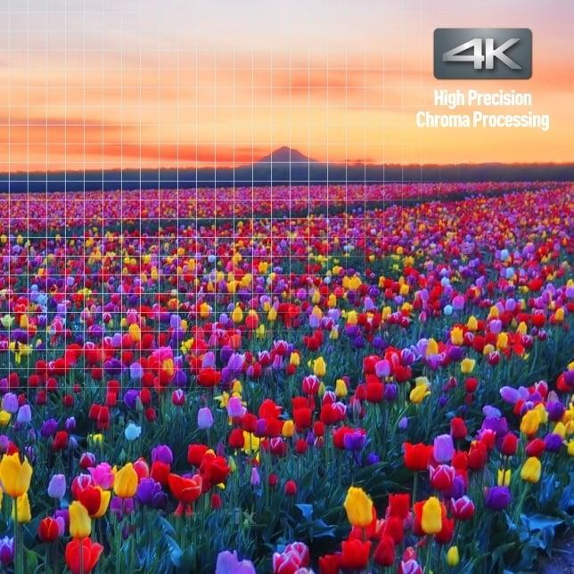 Panasonic Blu-Ray-Player Farben und Details Symbolbild
